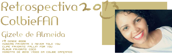 20133